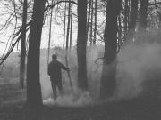 black-and-white-fire-forest-smoke-winter-Favim.com-81368